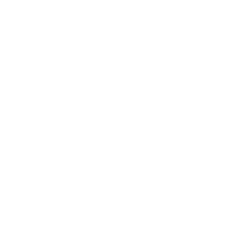 Vanilla sugar icon
